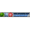 Thames Valley XC Ski Club Icon
